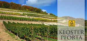 Weingut Kloster Pforta